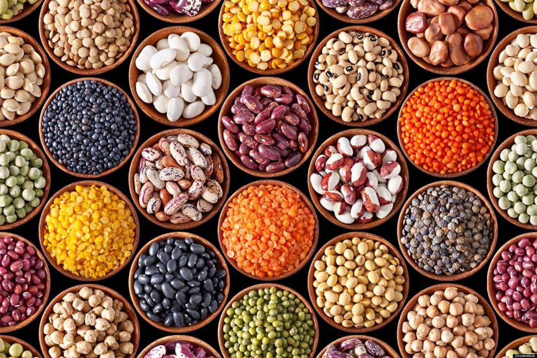 Các loại đậu ăn chay