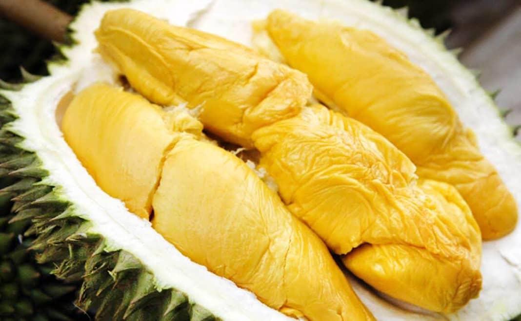 Ăn sầu riêng có mập không
